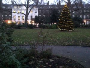 Bedford Square Christmas Tree with white lights